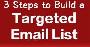 3 Steps to Build a Targeted Email List of People Who Want What You Offer ( #3 is the key )